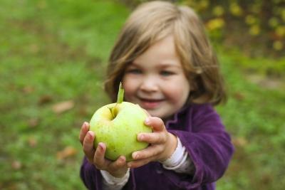 Namines uogas, obuolius galima valgyti ir neplautus